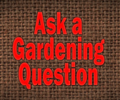 Ask a gardening question